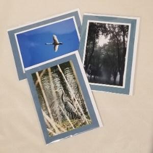 Janye Fuller Photography